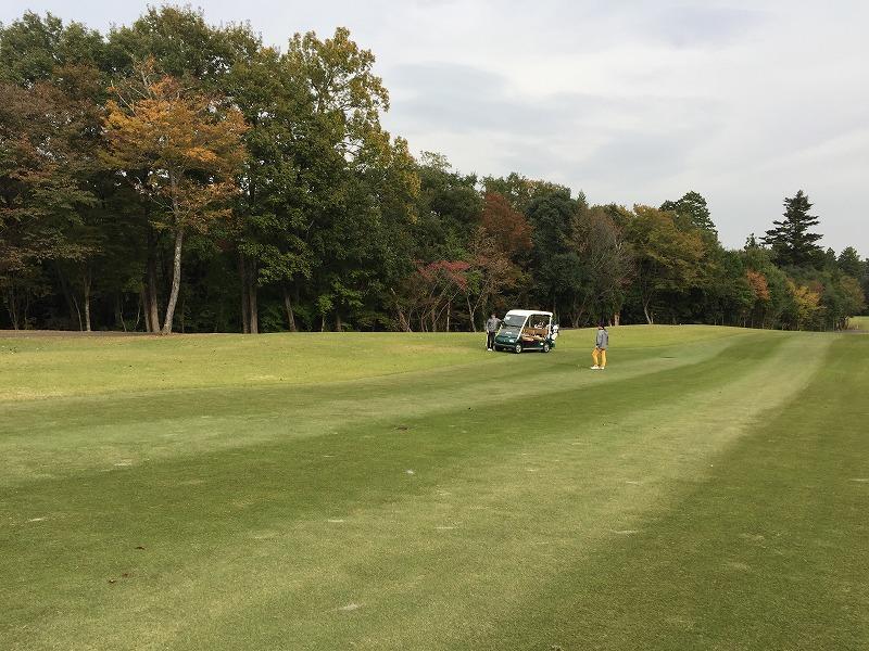 ゴルフ (3)